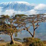 Сафари-туры в Танзанию