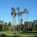 Сафари-туры в Уругвай